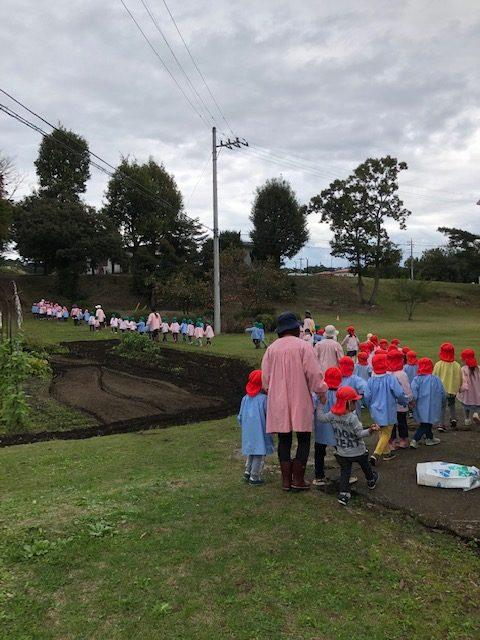 ピカピカ運動とサツマイモ掘り